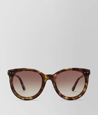Bottega Veneta Avana Brown Acetate Sunglasses