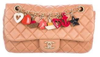 Chanel Medium Marine Charms Single Flap Bag
