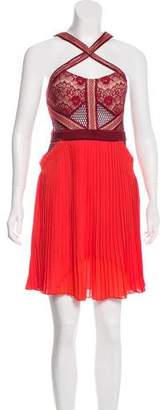 Three floor Pleated Knee-Length Dress