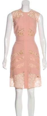 Elie Saab Lace-Accented Sheath Dress Pink Lace-Accented Sheath Dress