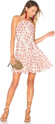 Tularosa Helix Dress $168 thestylecure.com