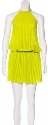 Alexis Pleated Knee-Length Dress