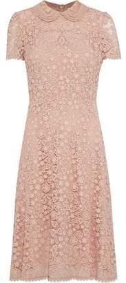 RED Valentino Floral-Appliquéd Cotton Macramé Lace Dress