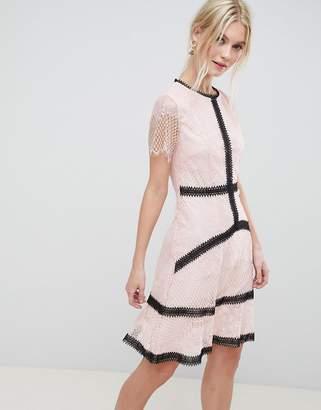 Liquorish Lace Skater Dress With Contrast Trim