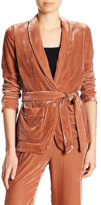 Joie Anasophia Velvet Jacket