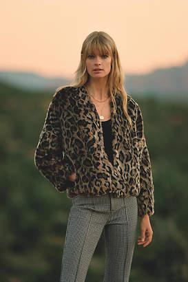 Velvet by Graham & Spencer Plush Leopard Jacket