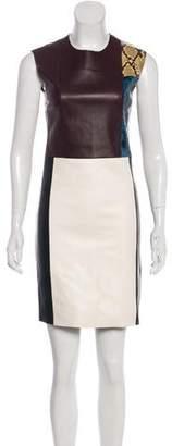 Celine Leather Python-Paneled Dress
