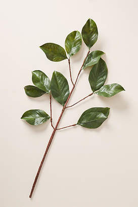 Anthropologie Magnolia Leaf Stem