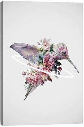 iCanvas icanvasart Kolibri By N/A