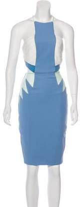 Three floor Mesh-Trimmed Cutout Dress w/ Tags