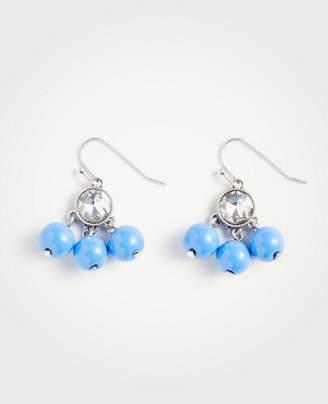 Ann Taylor Ball Earrings