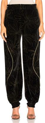 Chloé Gold Pigment Printed Velvet Sweatpants