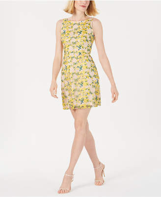 Adrianna Papell Embroidered Overlay Mini Dress
