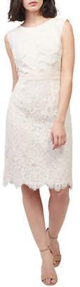 Precis Petite Shutter Lace Dress