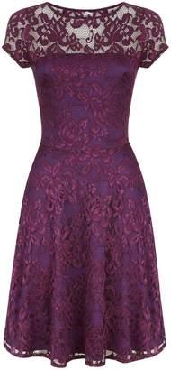 Next Womens HotSquash Purple Lace Fit N' Flare Dress