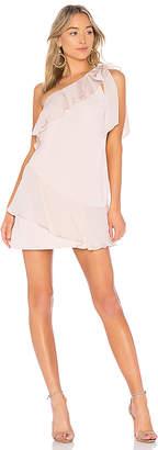 Parker Eden Dress
