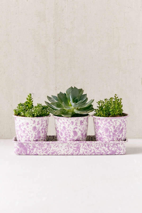 Speckled Planter Set + Tray