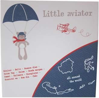 FRAMe WORK Candide Little Aviator C1013 Wedge Framework Picture 38 x 38 cm