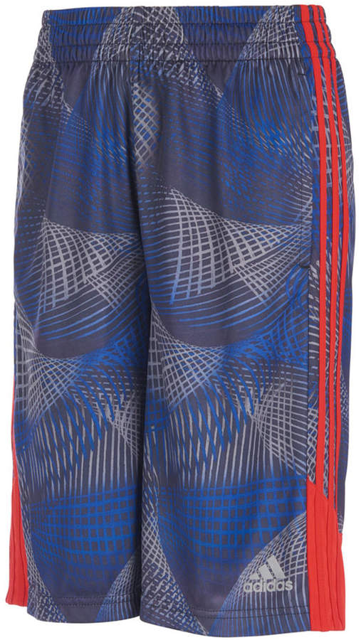 Little Boys Amplified Net Printed Shorts