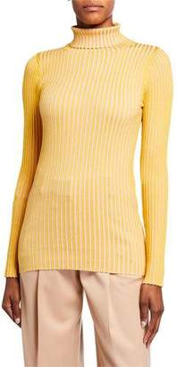 Sies Marjan Silk Striped Turtleneck Sweater