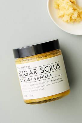 Fig + Yarrow Travel-Sized Sugar Scrub