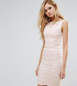 Vesper Lace Pencil Dress with Scallop Lace Bodice