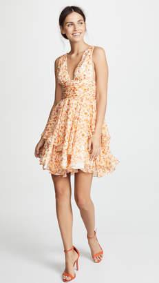 Caroline Constas Paros Dress