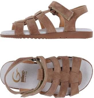 Gallucci Sandals - Item 11112328LT