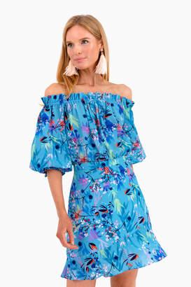 Saloni Bluebell Grace Mini Dress