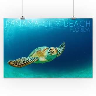 c6dd354001de3 Baby Sea Turtles - ShopStyle