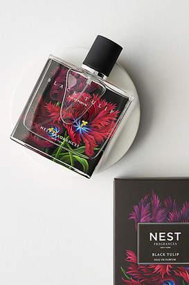 NEST Fragrances Eau De Parfum