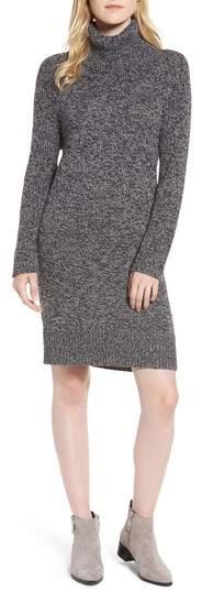 Women's Treasure&bond Turtleneck Sweater Dress