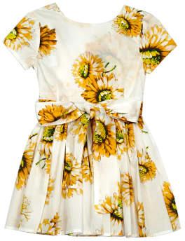 Morley Sale - Harper Belted Sunflower Dress