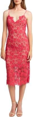 Bardot Lace Sheath Midi Dress