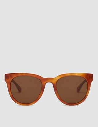 Need Jane Doe Sunglasses in Tortoise Light