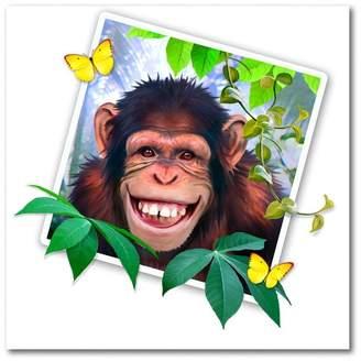 Trademark Fine Art Monkey Picture by Howard Robinson