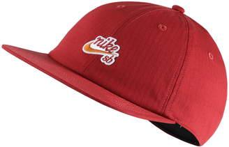Nike SB Dry Flatbill Cap