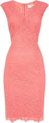 Wallis PETITE Coral Lace Shift Dress