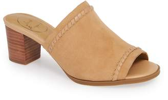 Jack Rogers Campbell Mule