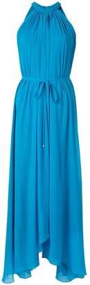 Saloni sleeveless flared maxi dress