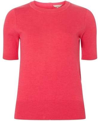 Dorothy Perkins Womens Petite Raspberry Knitted T-Shirt
