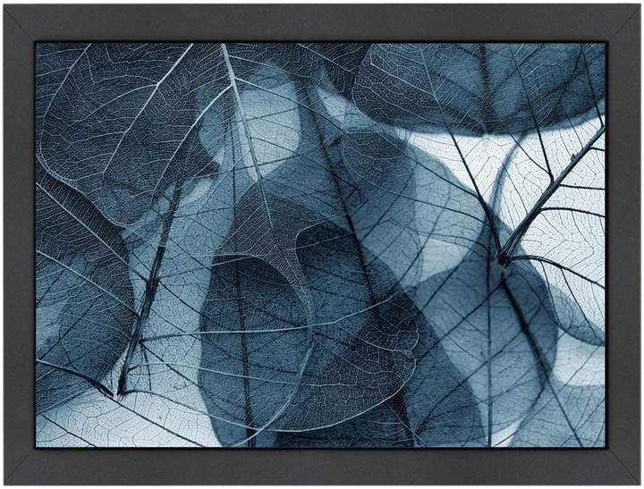 Americanflat Delicate in Blue by Ingrid Beddoes (Framed Giclee)
