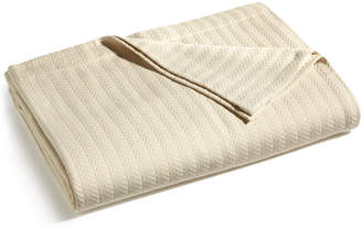 Hotel Collection Egyptian Cotton Twin Blanket, Created for Macy's