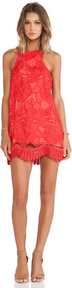 Lovers + Friends Caspian Shift Dress $180 thestylecure.com