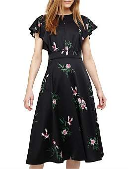Phase Eight D)Gwendolyn Floral Print Dress