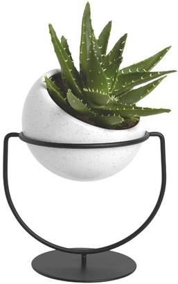 Umbra Metal & Ceramic Desk Planter