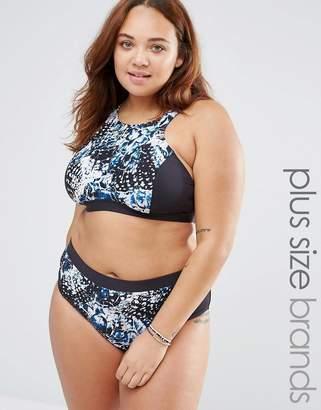 Robyn Lawley Broken Wings Halter Bikini Set with High Waist Bottoms