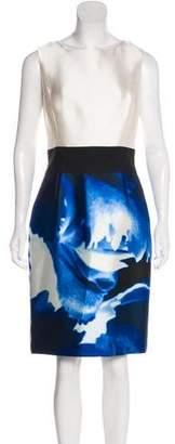 Oscar de la Renta Sleeveless Knee-Length Dress
