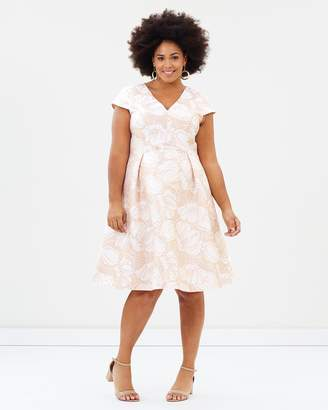 Studio 8 Loretta Dress