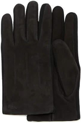 Lacoste (ラコステ) - ヌバック手袋